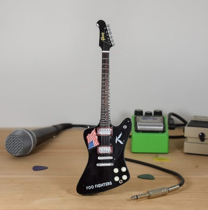 Foo Fighters, Dave Grohl - Gibson Firebird
